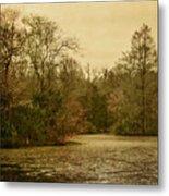 Fall Pond Metal Print