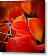Fall Red 6675 Metal Print