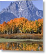 Fall Reflection At Oxbow Bend Metal Print