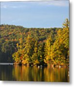 Fall Reflection Metal Print by Michael Mooney