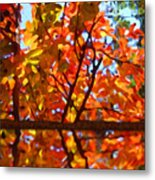 Fall Reflextion Metal Print