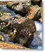 Fall Rushing Mountain Stream Metal Print