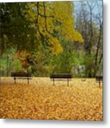 Fall Series 13 Metal Print