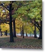 Fall Series 14 Metal Print