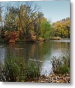 Fall Series 8 Metal Print