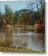 Fall Series 9 Metal Print