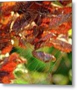 Fall Spiderweb Metal Print
