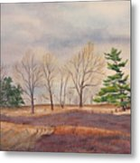 Fall Tapestry Metal Print