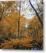 Fall Tees At  Yankee Horse Overlook   Metal Print