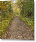 Fall Trail Scene 48 Metal Print