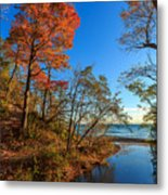 Fall Trails Metal Print