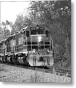 Fall Train In Black And White Metal Print