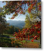 Fall Tree Colors II Metal Print