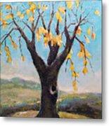 Fall Tree In Virginia Metal Print by Becky Kim