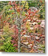 Fall Tree With Intense Colors Metal Print