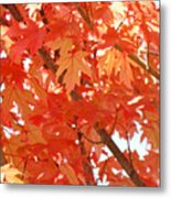 Fall Trees Colorful Autumn Leaves Art Baslee Troutman Metal Print