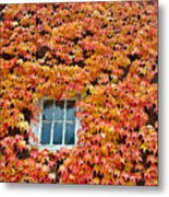 Fall Window Metal Print