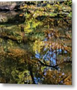 Fall Into Seasons Metal Print