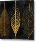 Fallen Gold II Autumn Leaves Metal Print