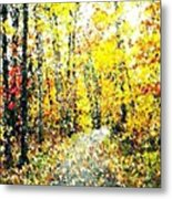 Fallen Leaves Of Autumn Metal Print