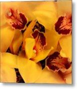 Fallen Orchids Metal Print
