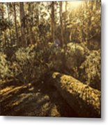 Fallen Tree In Foliage Metal Print