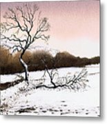 Fallen Tree Stainland Metal Print