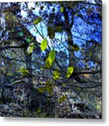 Falling Leaves Metal Print