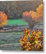 A Fall Day.  Metal Print