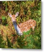 Fallow Deer 2 Metal Print