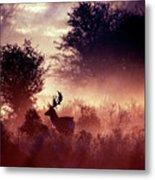 Fallow Deer In Fairytale World Metal Print