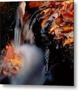 Falls Foliage Metal Print
