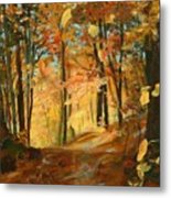 Fall's Radiance In Quebec Metal Print