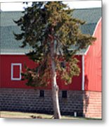 Family Barn Metal Print