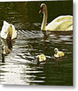 Family Day Out  Metal Print