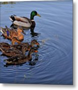 Family Outting Metal Print