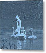 Family Swim Metal Print