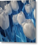 Fanciful Tulips In Blue Metal Print