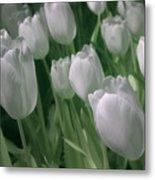 Fanciful Tulips In Green Metal Print