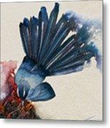 Fantail Flycatcher Metal Print