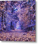 Fantasy Forest Metal Print