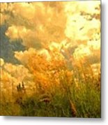 Far From The Maddening Crowd Metal Print by Wu Wei