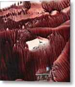 Far From The Road Metal Print