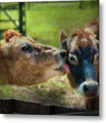 Farm - Cow - Let Mommy Clean That Metal Print