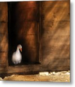 Farm - Duck - Welcome To My Home  Metal Print