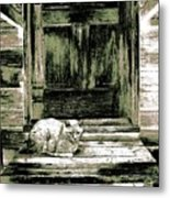 Farm Cat Metal Print