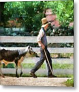 Farm - Cow -the Farmer And The Dell  Metal Print
