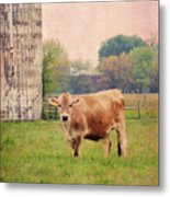 Farm Dreamscape Metal Print