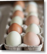 Farm Fresh Eggs Metal Print