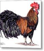Farm Rooster Metal Print